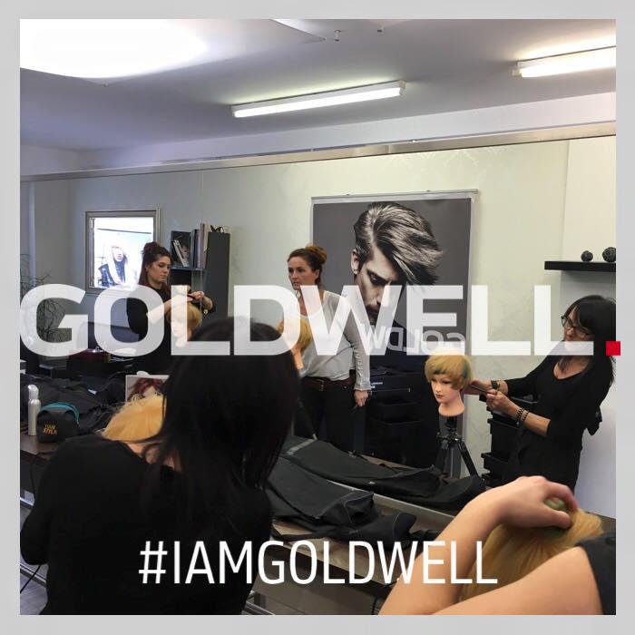 Goldwellschulung April 2016 5